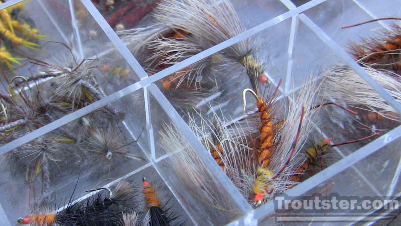 Bin style fly box. This type works great for all dry flies.