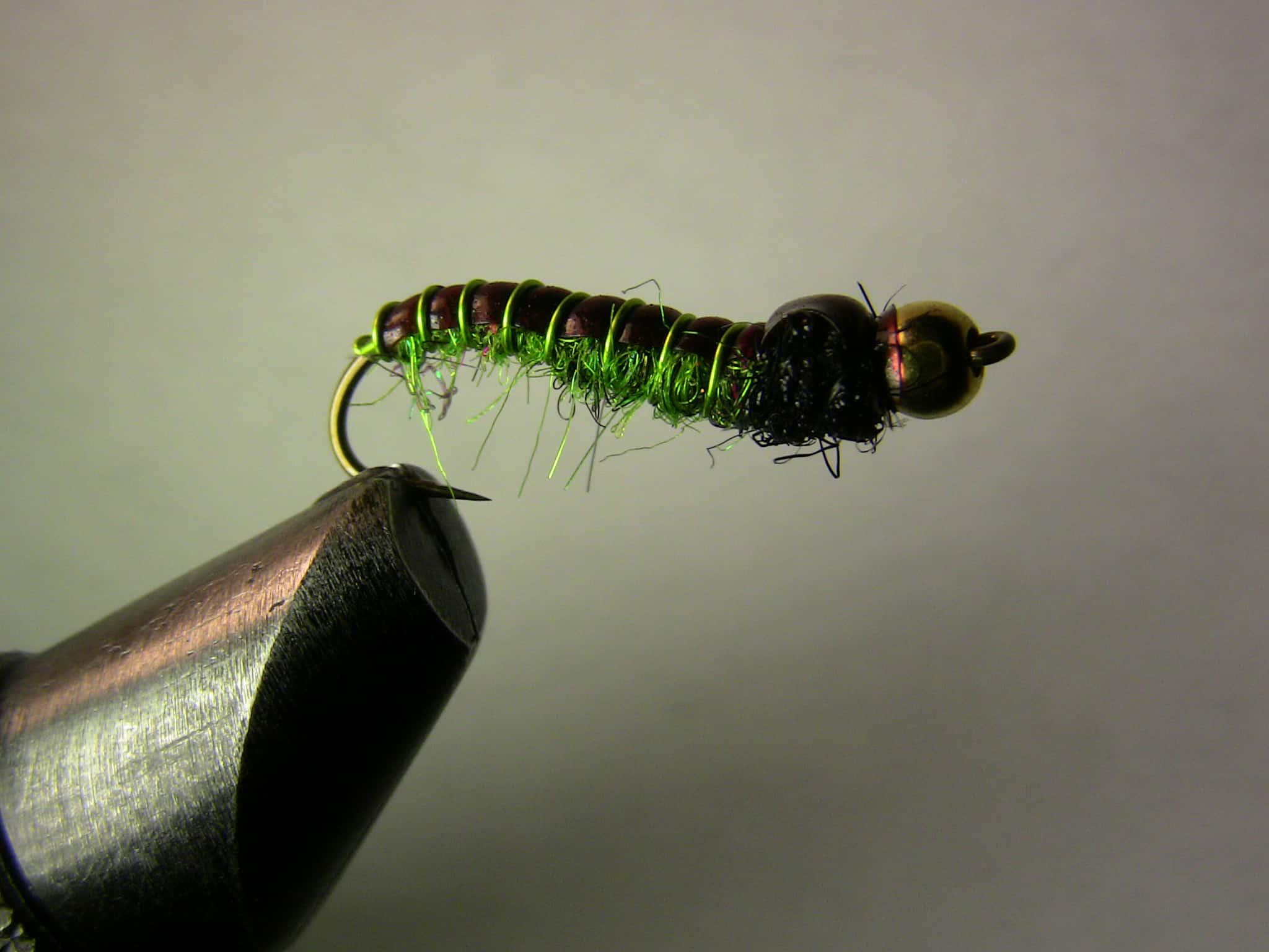 One of my favorite Green caddis larva patterns