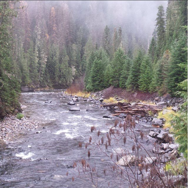 Interactive fishing maps - A great Idaho trout stream shown here