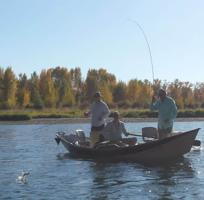 Landing a fish on a dry fly in Idaho
