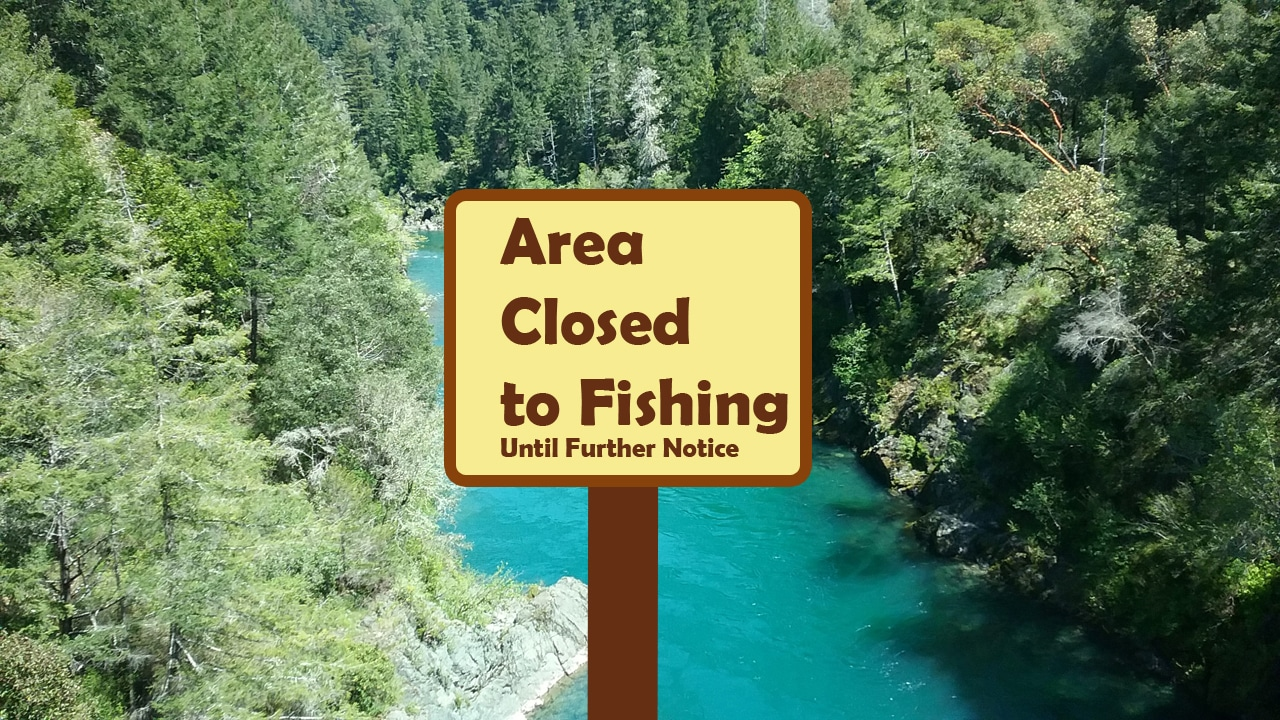 Area closed to fishing due to high water temps