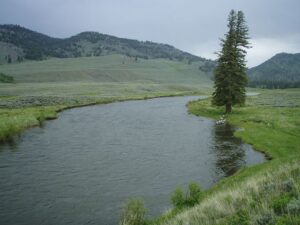 Lower Slough creek in Yellowstone Park