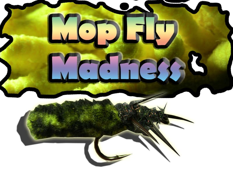 Mop flies - Using a mop to tie fishing flies