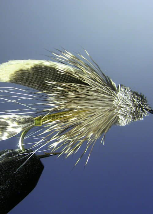 Muddler-Minnow my top trout fishing fly of all time