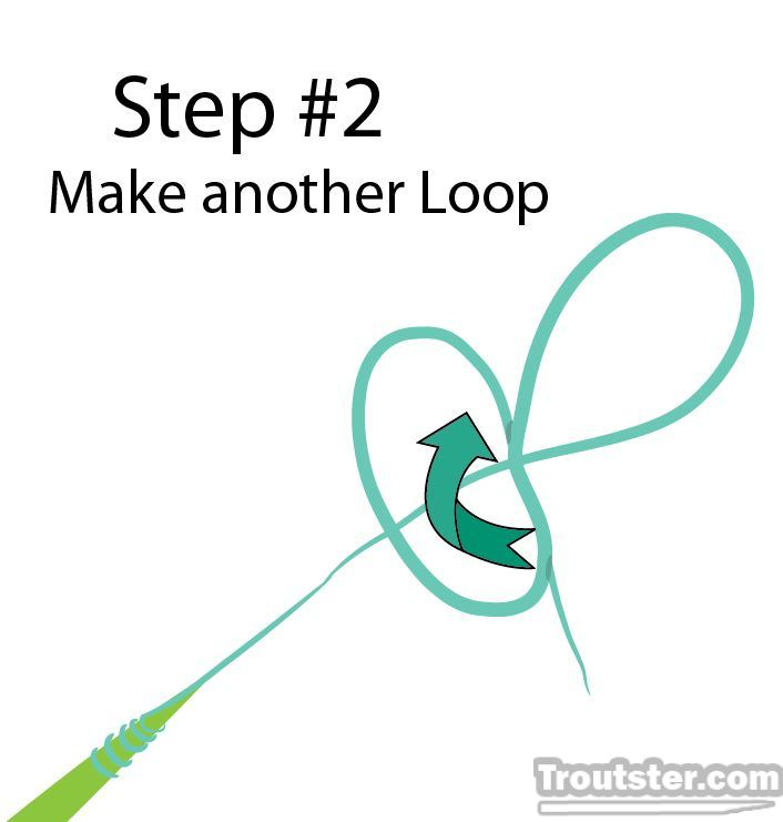 Step two of tutorial How to tie the perfection loop knot