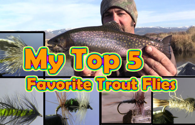 The 5 best flies for trout ever copy