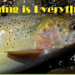 How to determine when to set the hook on a trout
