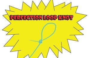 The perfection loop knot
