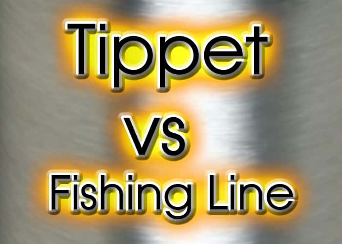 Tippets vs fishing line, whats the difference