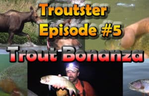 Trout fishing bonanza troutster episode 5