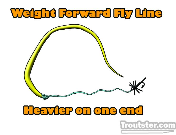 Weight forward fly line example