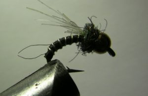 Zebra midge tying variation using a yak hair wing