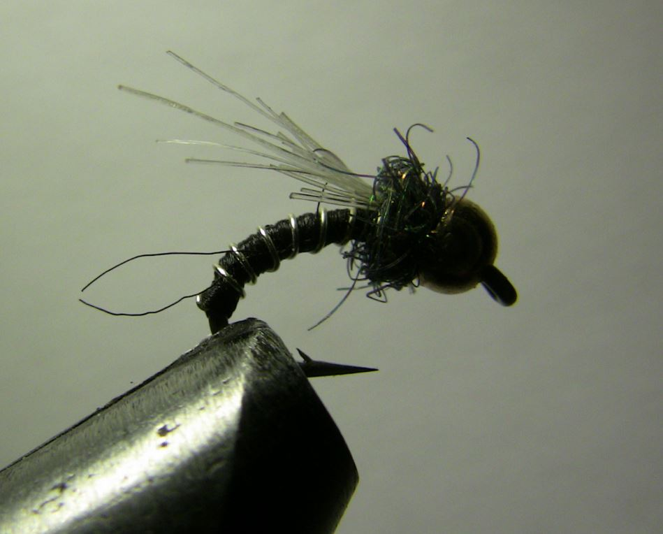 How To Tie The Zebra Midge Fly Pattern Troutster Com