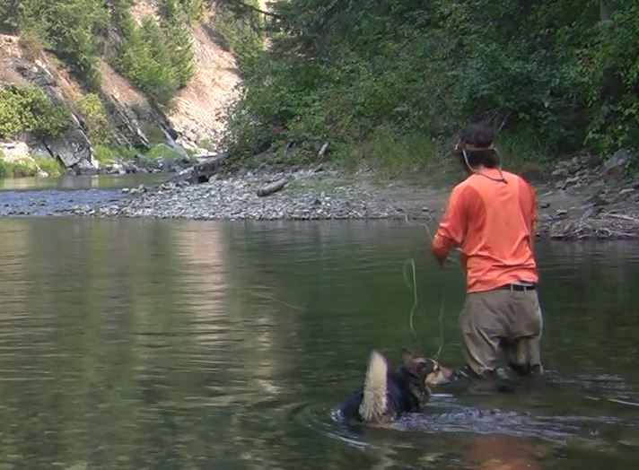Standing in a river casting to trout with my dog.