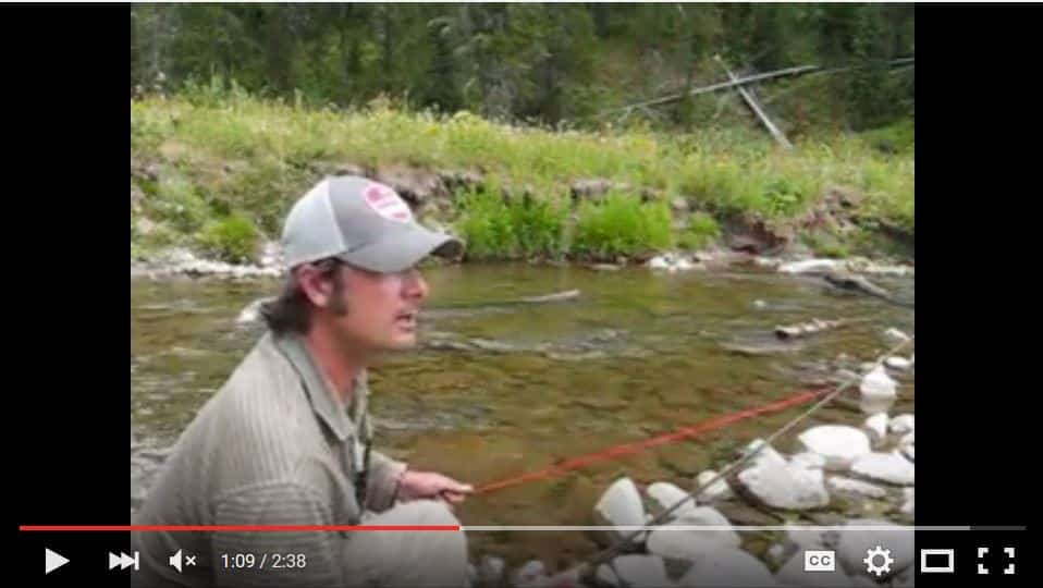fly fishing instruction videos